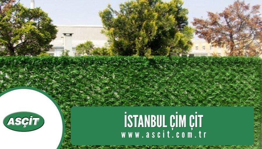istanbul-cim-cit